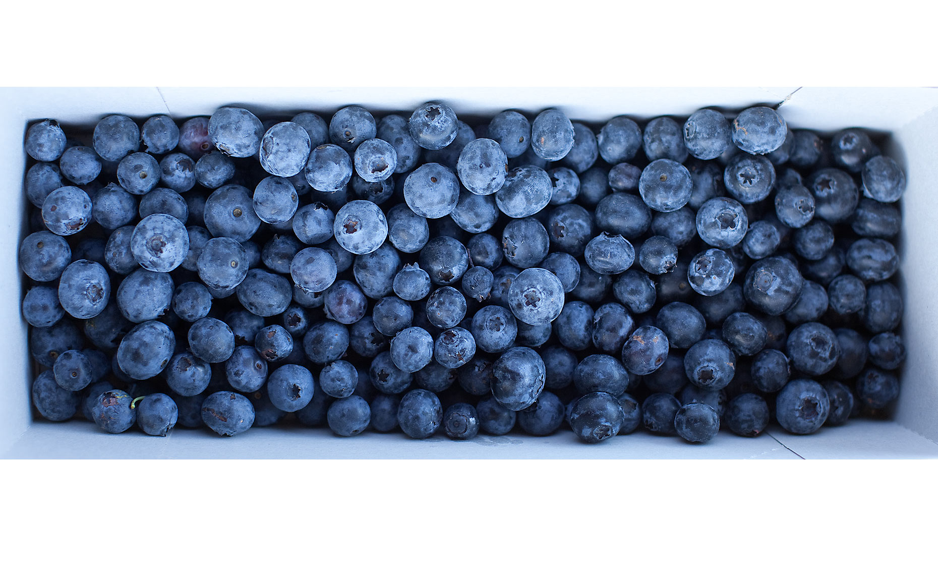 10-blueberries